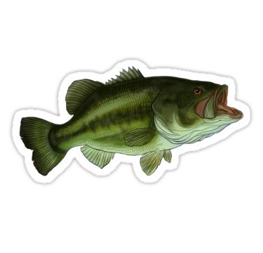 Black Bass Sticker By Inkfish Art Vinyl Sticker Vinyl Stickers