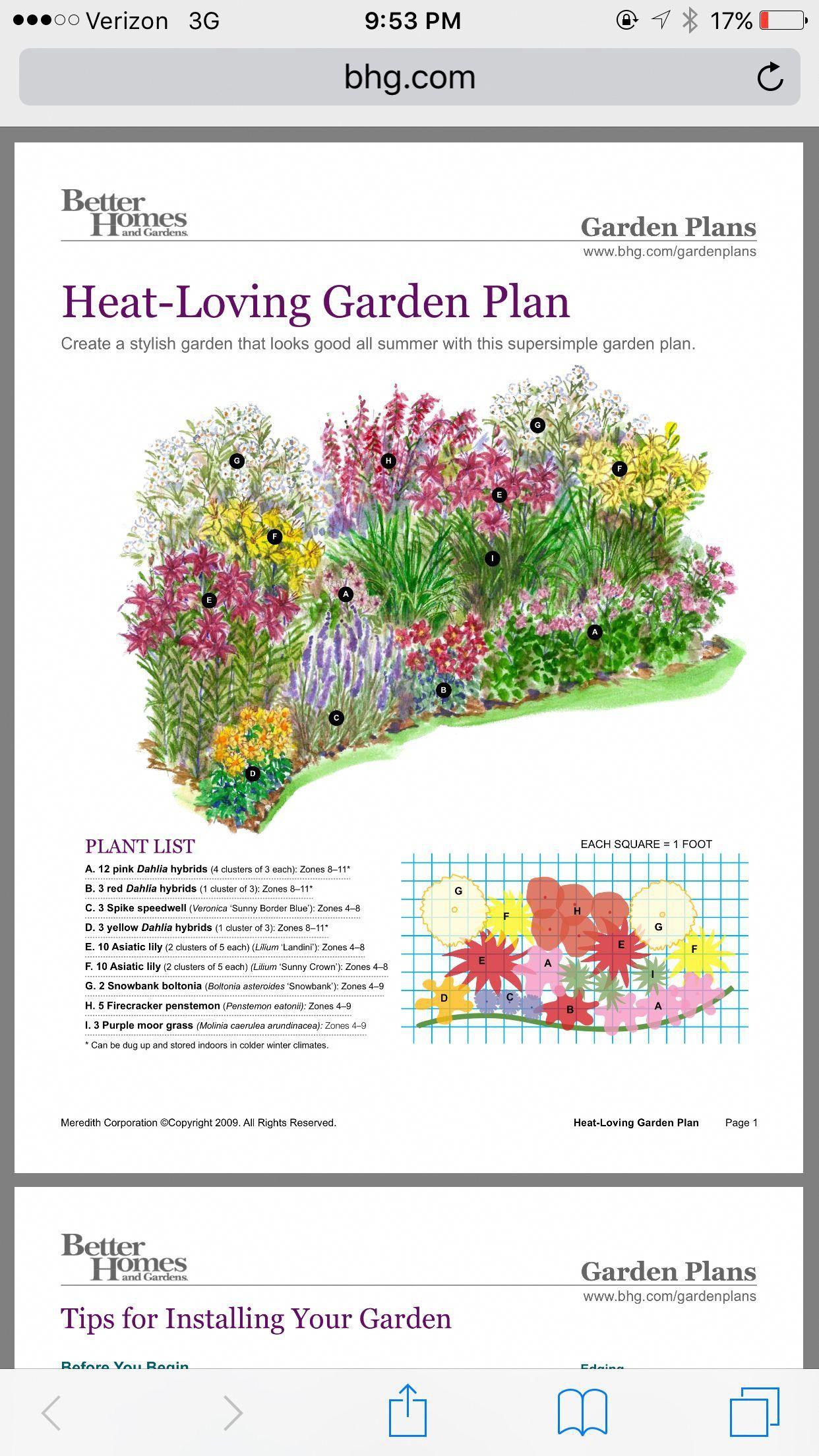 Heat Loving Garden Gardenplanningideas Flower Garden Plans Garden Planning Growing Lavender