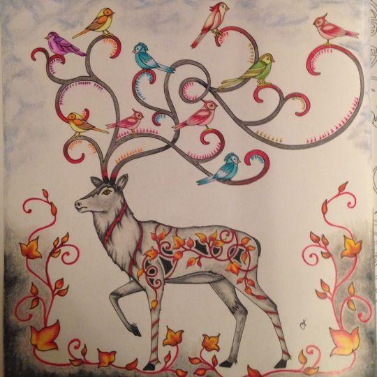 Johanna Basford Colouring Gallery Livro De Colorir Veados