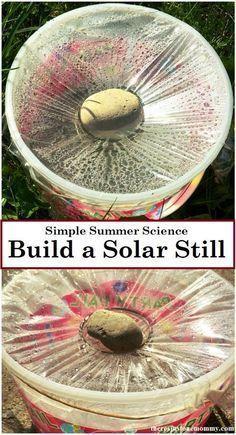 How to Make a Solar Still — Simple Summer STEM Activity