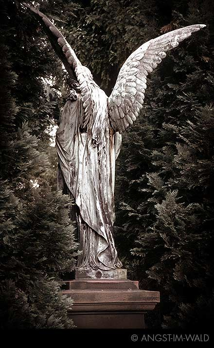 An angel facing backwards means they are ashamed #PadreMedium