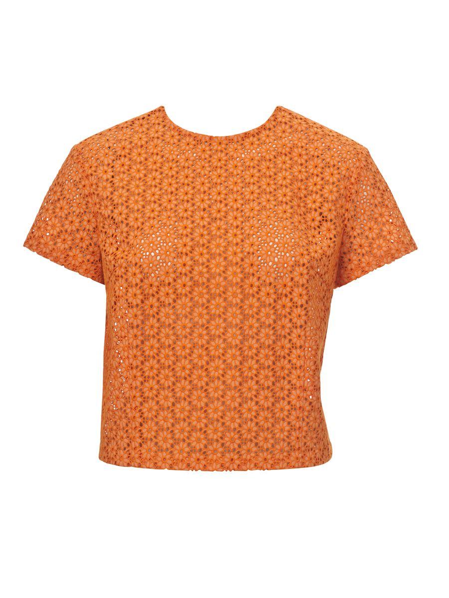 Farbenfrohe Leicht Taillierte Kurze Bluse Mit Knopfleiste Im
