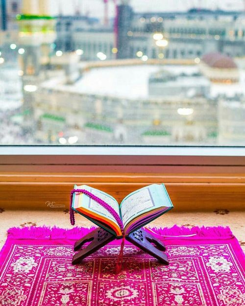 Flowers And Love Image Not To Toch Or Invade Little Girls Either 18 Years Of Age And Younger Nobody Is To Make Me Or My Quran Book Holy Quran Islamic Images