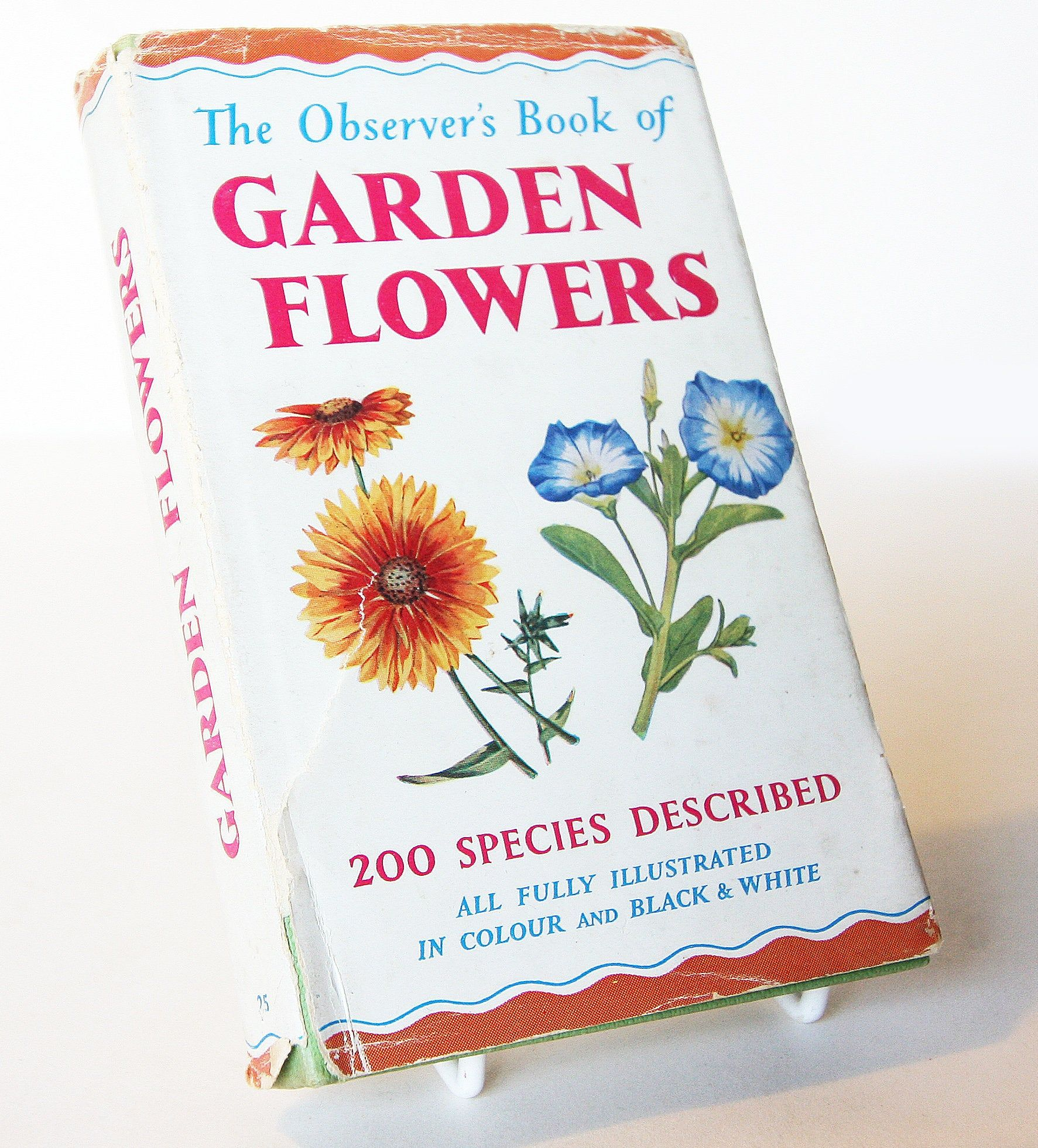 Vintage Garden Flowers Illustrated Plants 50s Flower Picture Book Flowers Guide Old Retro Book Flowers Flower Pictures Flower Guide