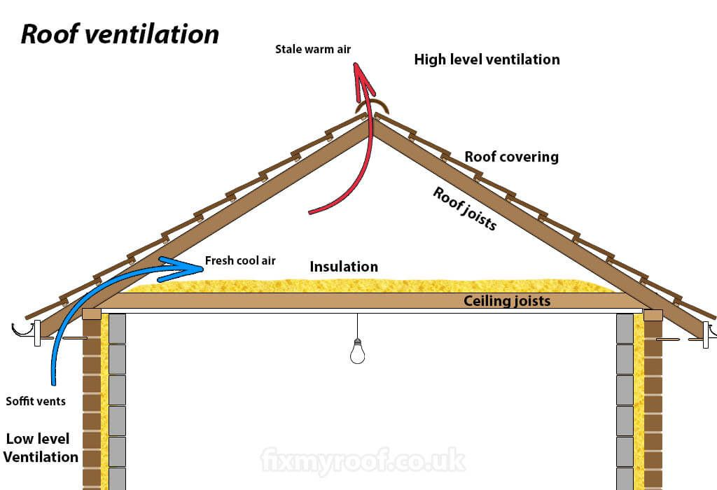 Roof Insulation And Ventilation In 2020 Roof Insulation Roof Repair Air Insulation