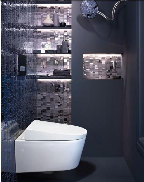 WC design & confortable moderne chic et stylé avec des nuances de ...