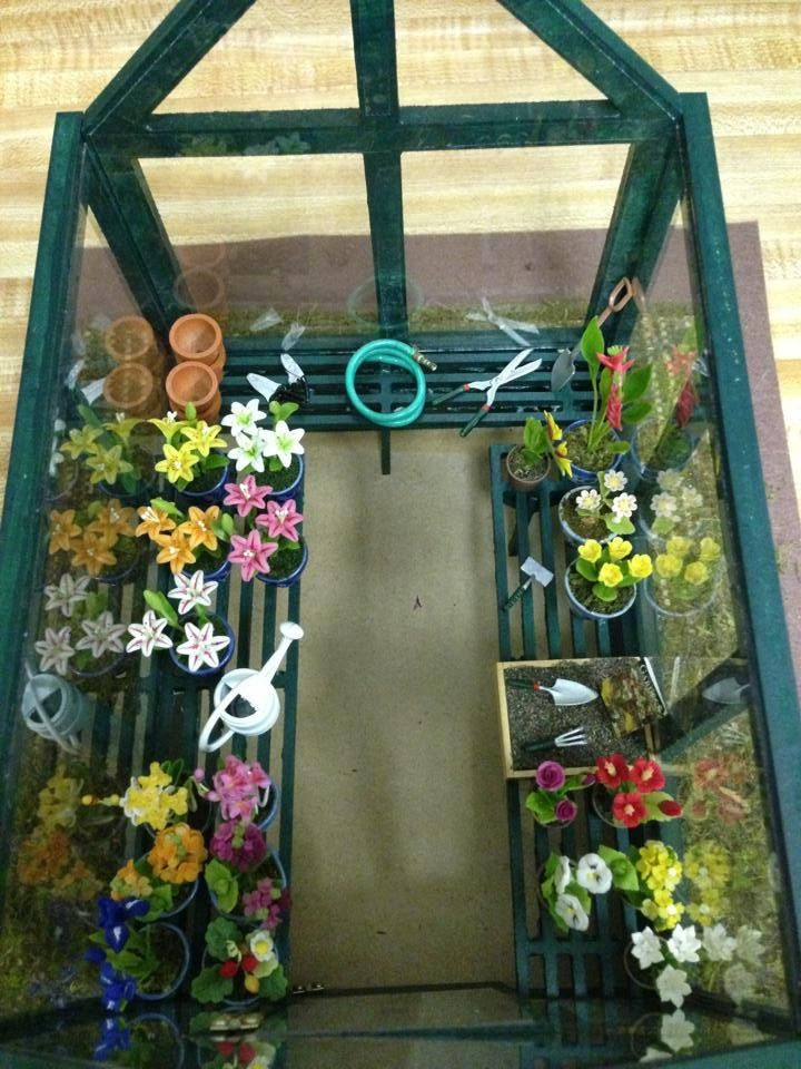 Inside view of miniature greenhouse