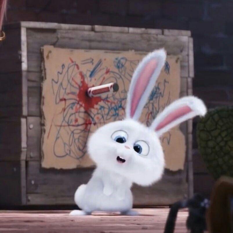 Pin Di Bunny