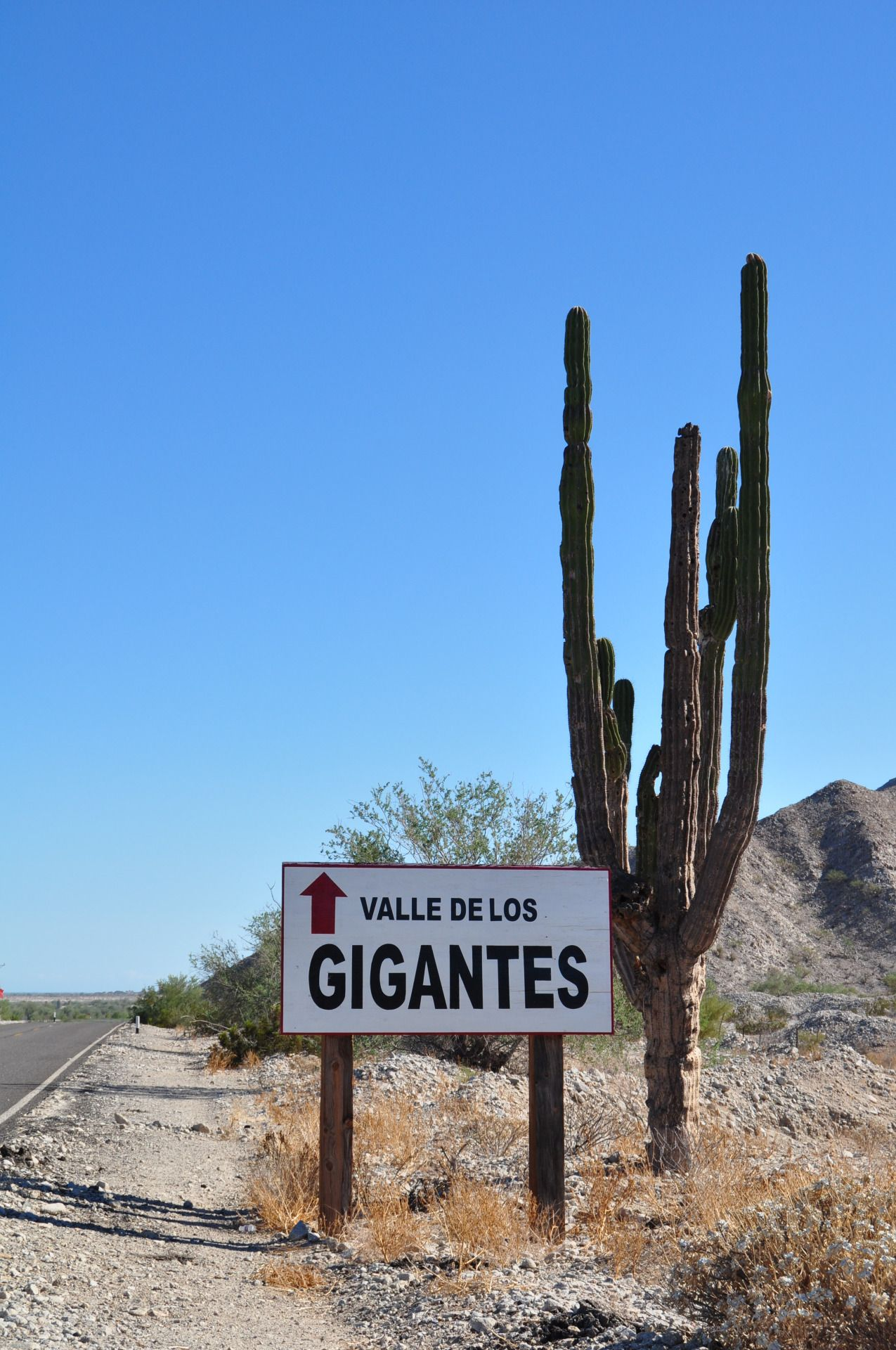 10 Things San Felipe Does Best With Images San Felipe Mexico