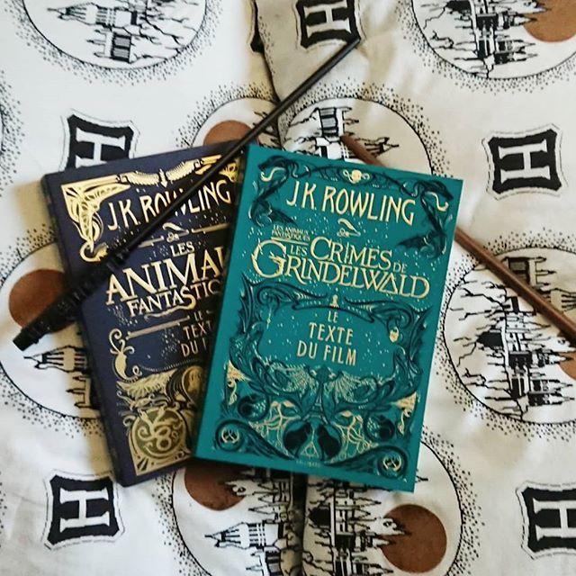 Les Crimes De Grindelwald Les Animaux Ftanastiques 2 Le Ltexte Du Livre Gallimard Harry Potter Hogwarts Harry Potter Fantastic Beasts Harry Potter Wallpaper