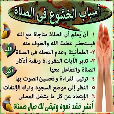 أسباب الخشوع بالصلاه Quran Verses Cool Words Peace Be Upon Him