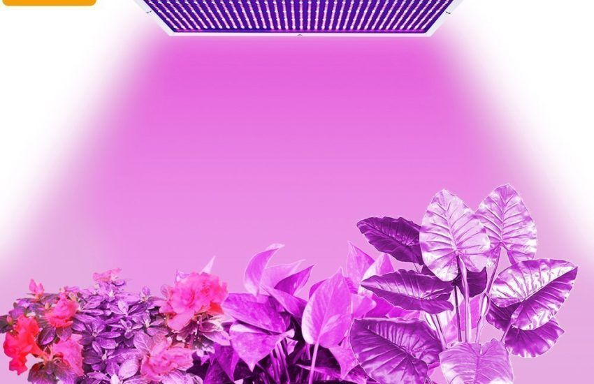 Top 5 Best 120 Watt Led Grow Lights Review For Your Plants Led Grow Lights Grow Lights Led Grow