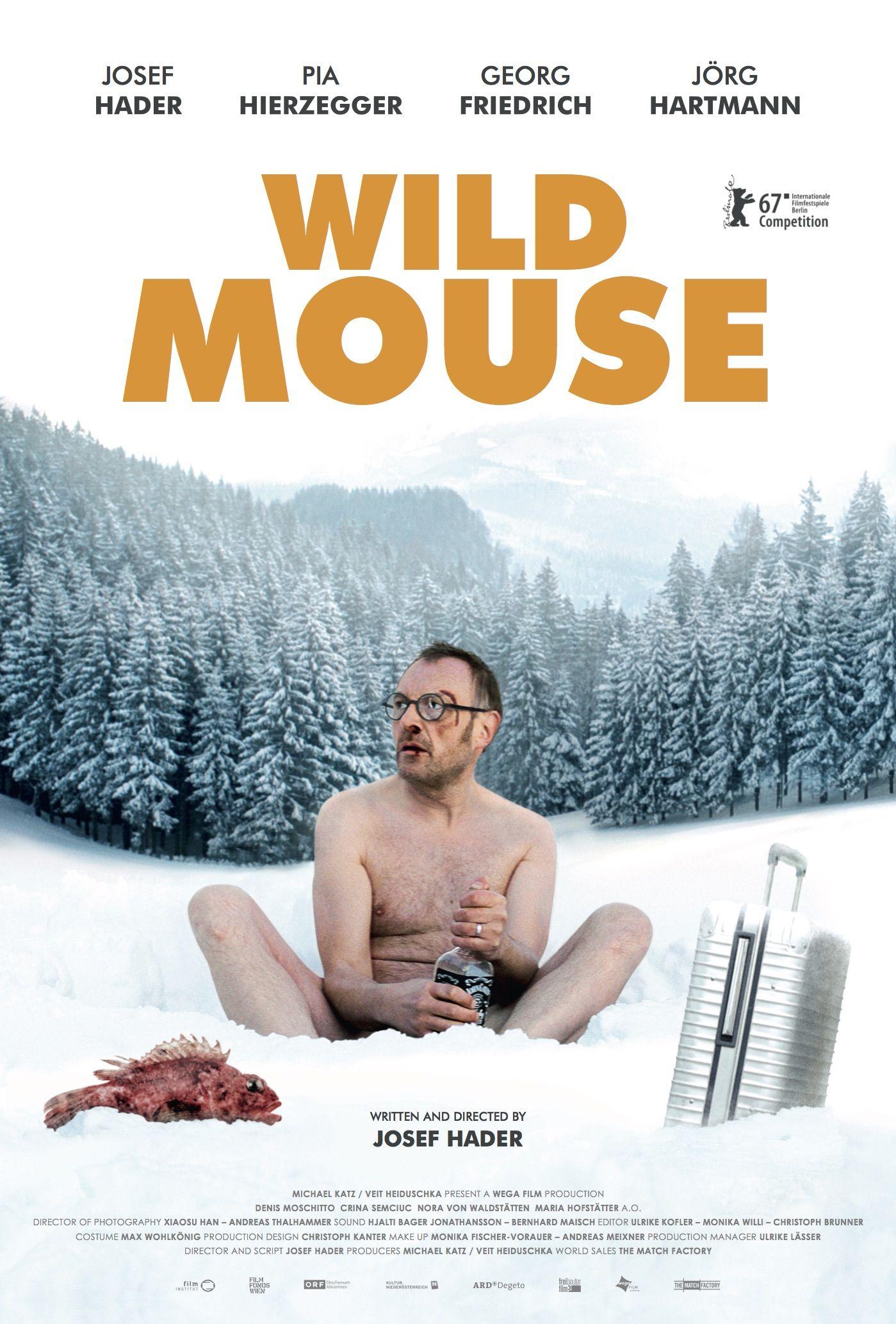 Wilde Maus Stream