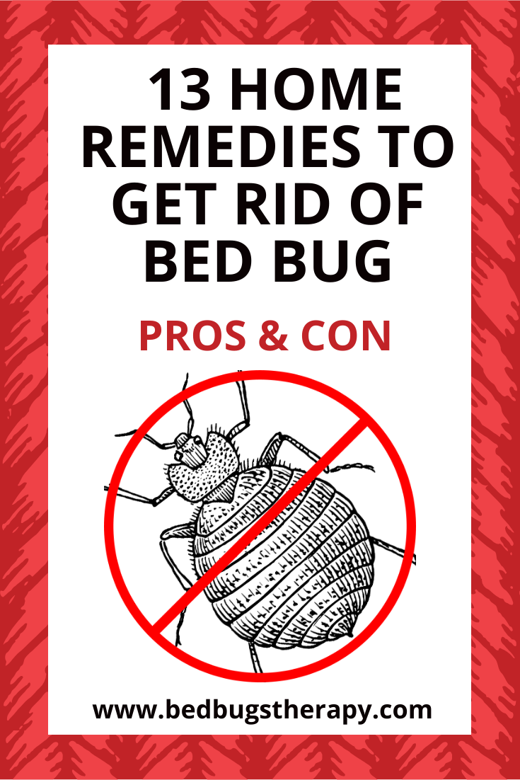 13 Home Remedies To Get Rid Of Bed Bugs Pros And Cons Rid Of Bed Bugs Bed Bug Remedies Bed Bugs