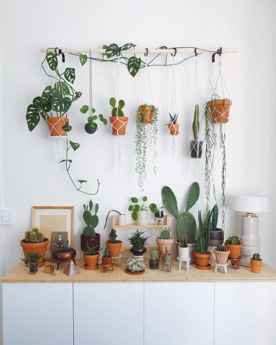 Plant friends! Next week I'm going to Madrid and I'm super excited! I have never been there so I would love to hear your best tips of what… #articlesblog
