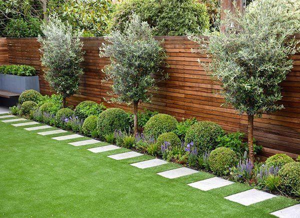 #GardenShrubs , #GardenShrubs