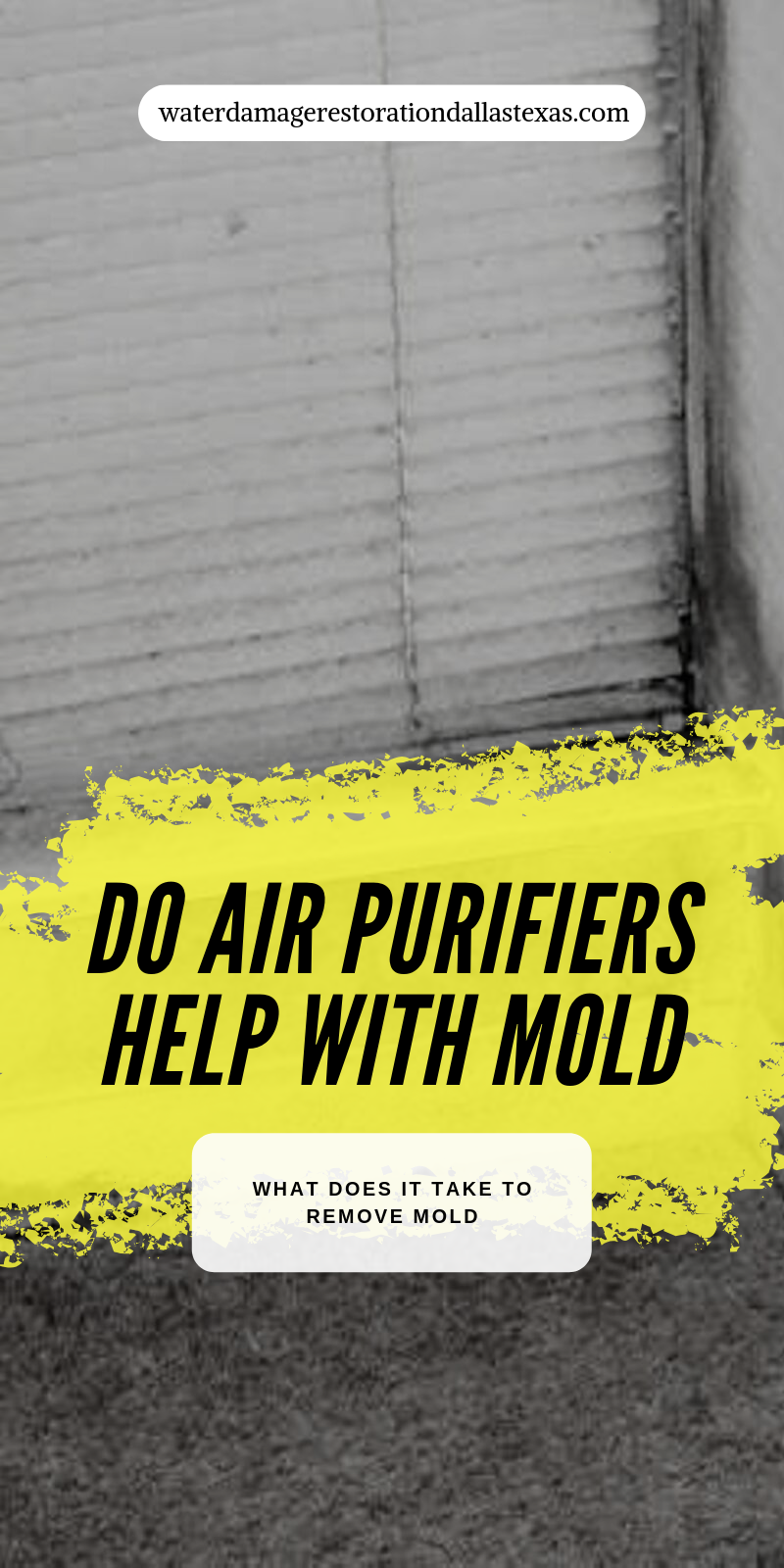 Do Air Purifiers Help With Mold Air purifier, Purifier