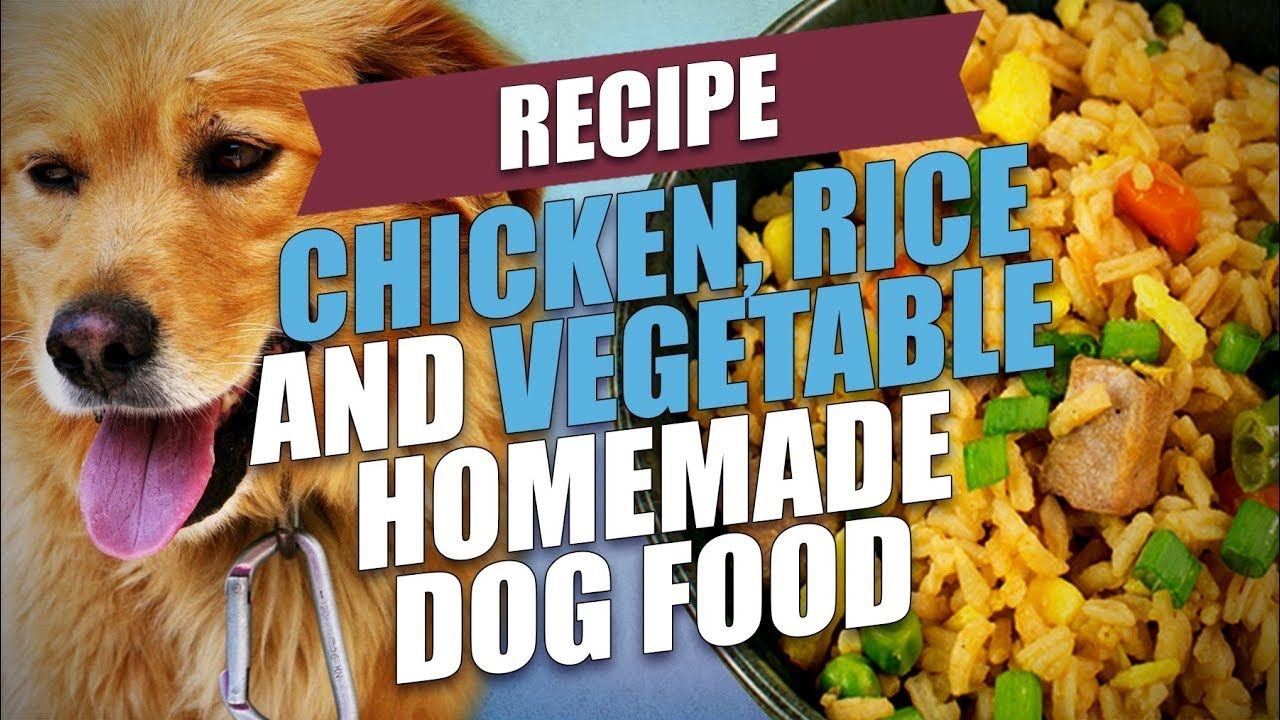 Chicken rice and vegetable homemade dog food recipe