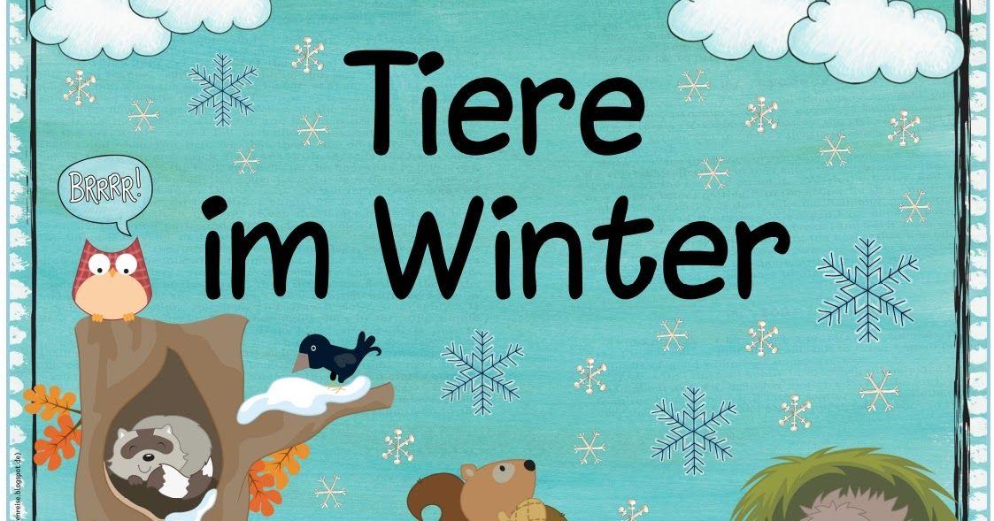 Themenplakat Tiere Im Winter Das Nachste Plakat Zum Thema Tiere