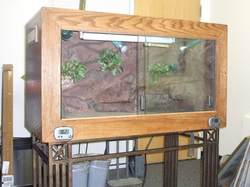 Build Your Own Bearded Dragon Cage Bearded Dragon Cage