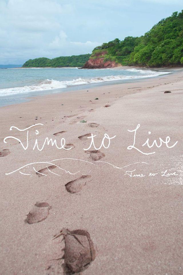 Just A Pink Sand Beach In Costa Rica