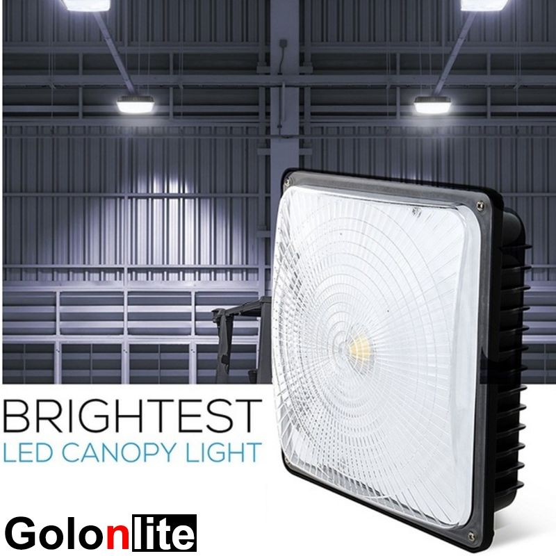 100w Led Canopy Light Super Bright 130lm W Philips Lumileds Meanwell Driver 5 Years Warranty Factory Price Great Quality Olivia Golonl Canopy Lights Canopy Led