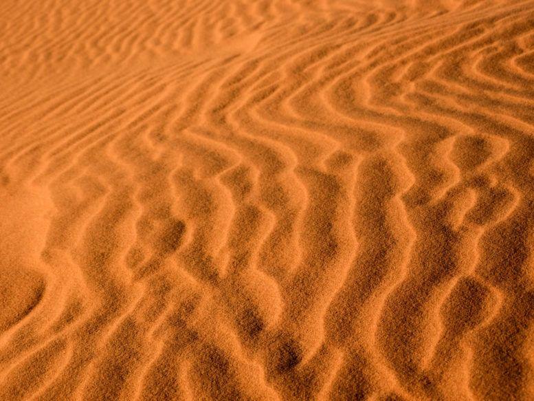 Life Abundant - Sahara Desert Morocco, Sahara photography, Sahara Desert Blog, best places to visit in the Sahara, Sahara Desert Morocco Travel, Sahara Tour, Morocco Travel