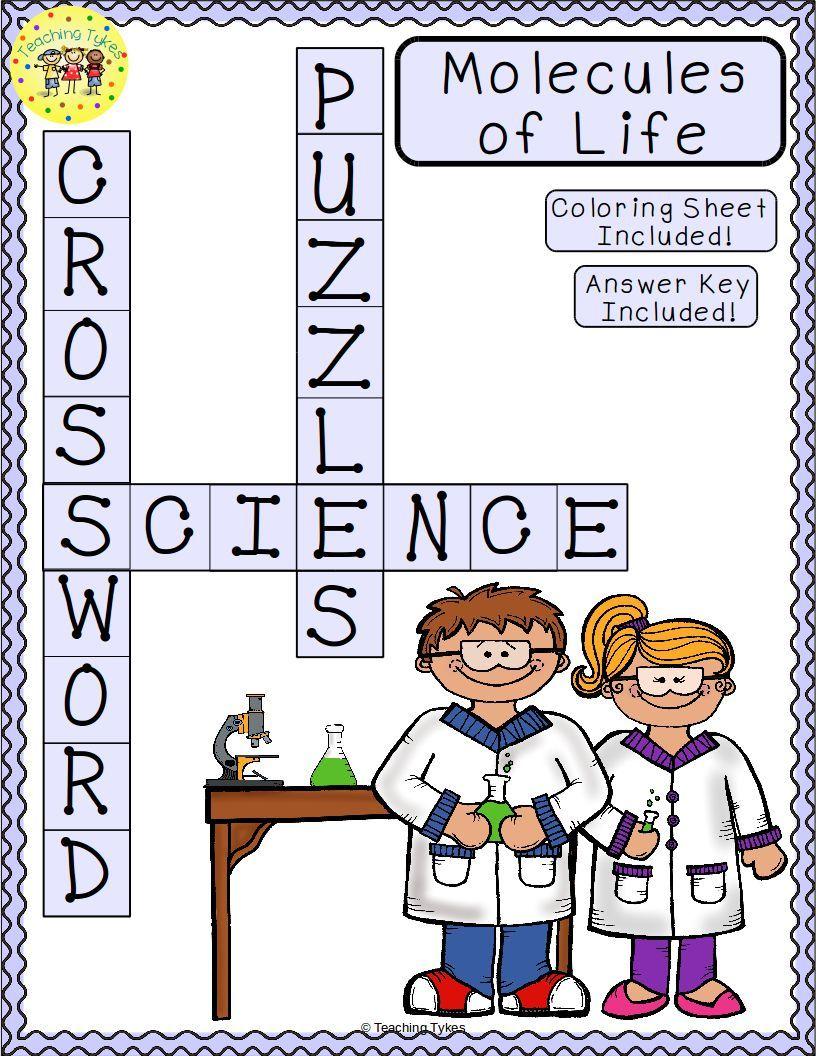 worksheet Molecules Of Life Worksheet molecules of life science crossword puzzle coloring worksheet middle school