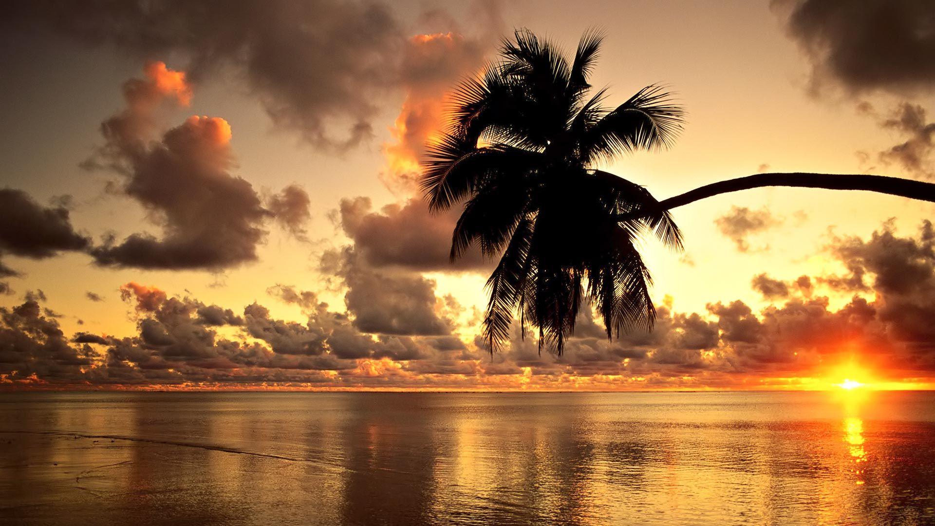 Hawaii Beach Sunset Wallpaper Hawaii Sunset Beach Hd Wallpaper