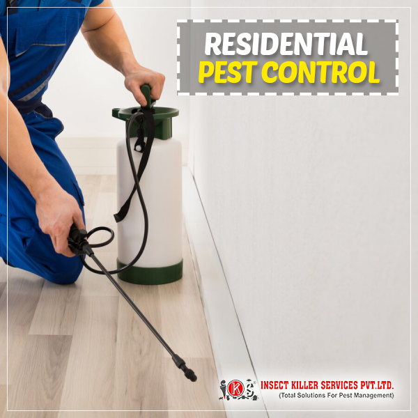 Get Rid of insects from your property with the