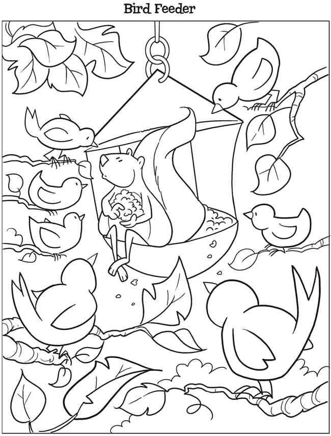 Welcome To Dover Publications Kooky Birds Coloring Book