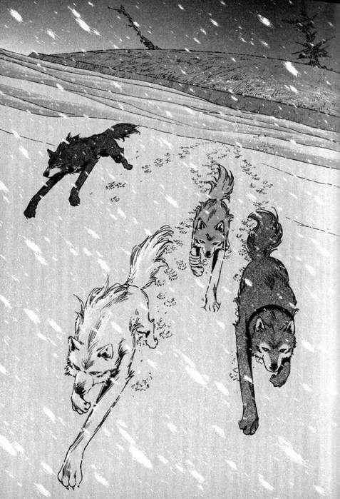 Картинки по запросу волчий дождь манга цуме и тобоэ | Wolf ...