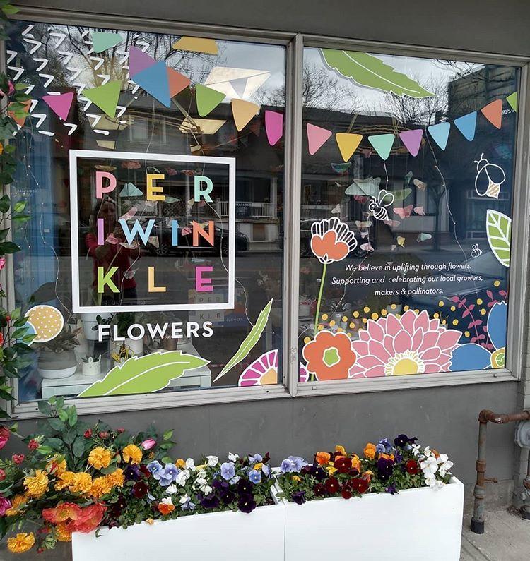 Lovely Beautiful Joyful Fun Periwinkle Flowers Pretty Flowers
