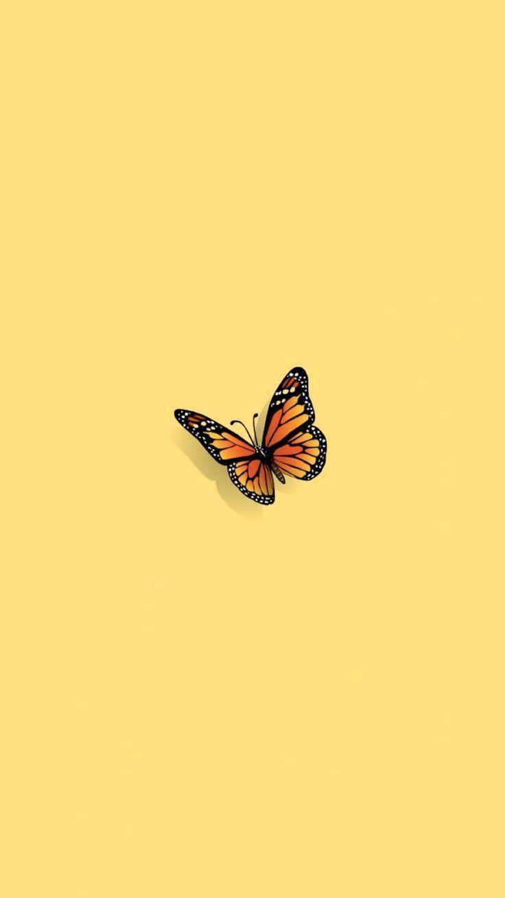 Bilder Von Screen Butterfly Wallpaper Iphone Aesthetic Iphone Wallpaper Iphone Background Wallpaper
