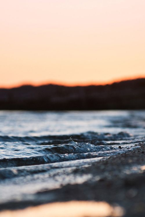 Immagine di sea, beach, and summer