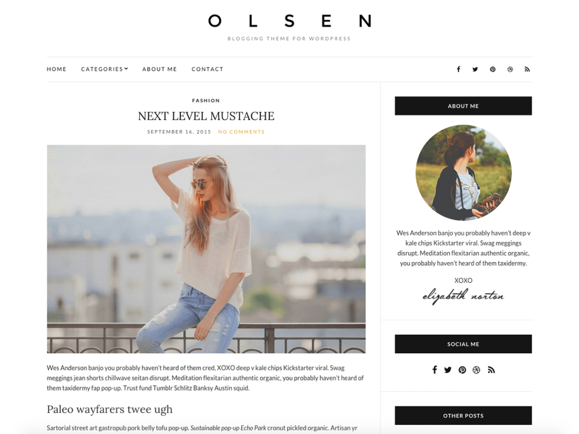 Olsen Light is a beautiful and elegant WordPress theme for bloggers ...