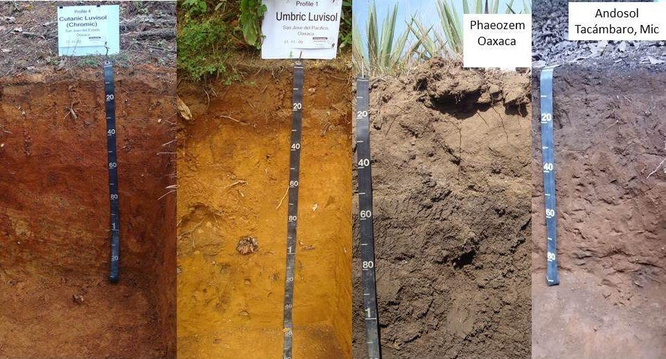 la y geografa de suelos en las del ao y da del suelo