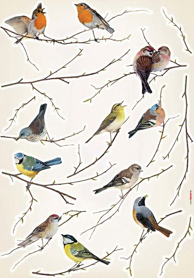 I Liked This Design On Fab Birds Bird Wall Decals Bird Wall Art Wall Appliques