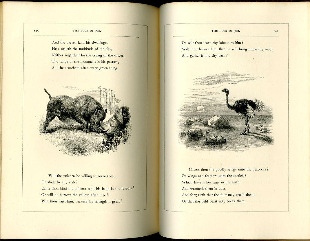 John Gilbert in 2020 Book of job, Victorian books, John