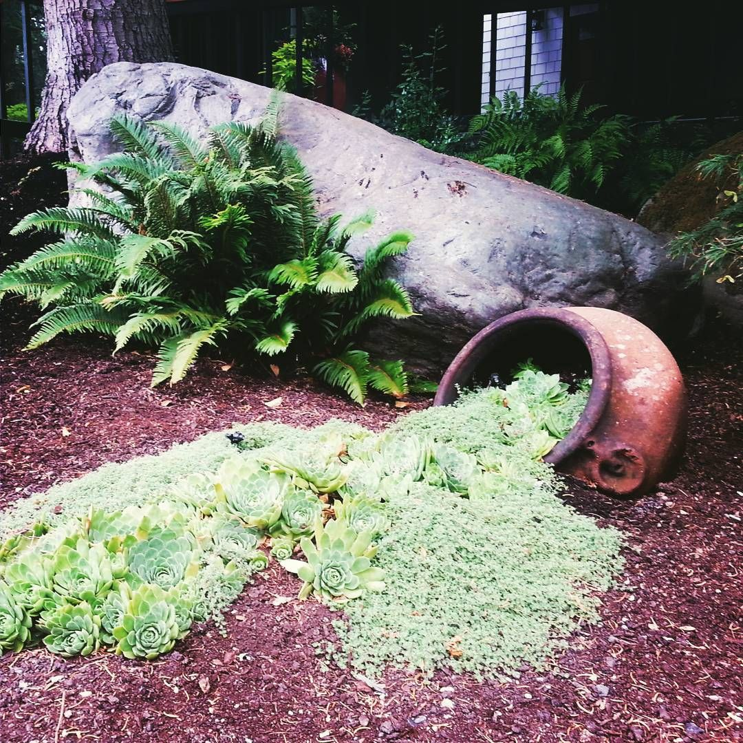 A Solution to Hide Septic Tank Lids Sublime Garden