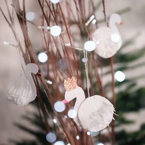 Make some cute swan ornaments for your Christmas tree this holiday season. If you have a little ballerina. she will love these. Make them dance to Tchaikovsky's Swan Lake ballet.