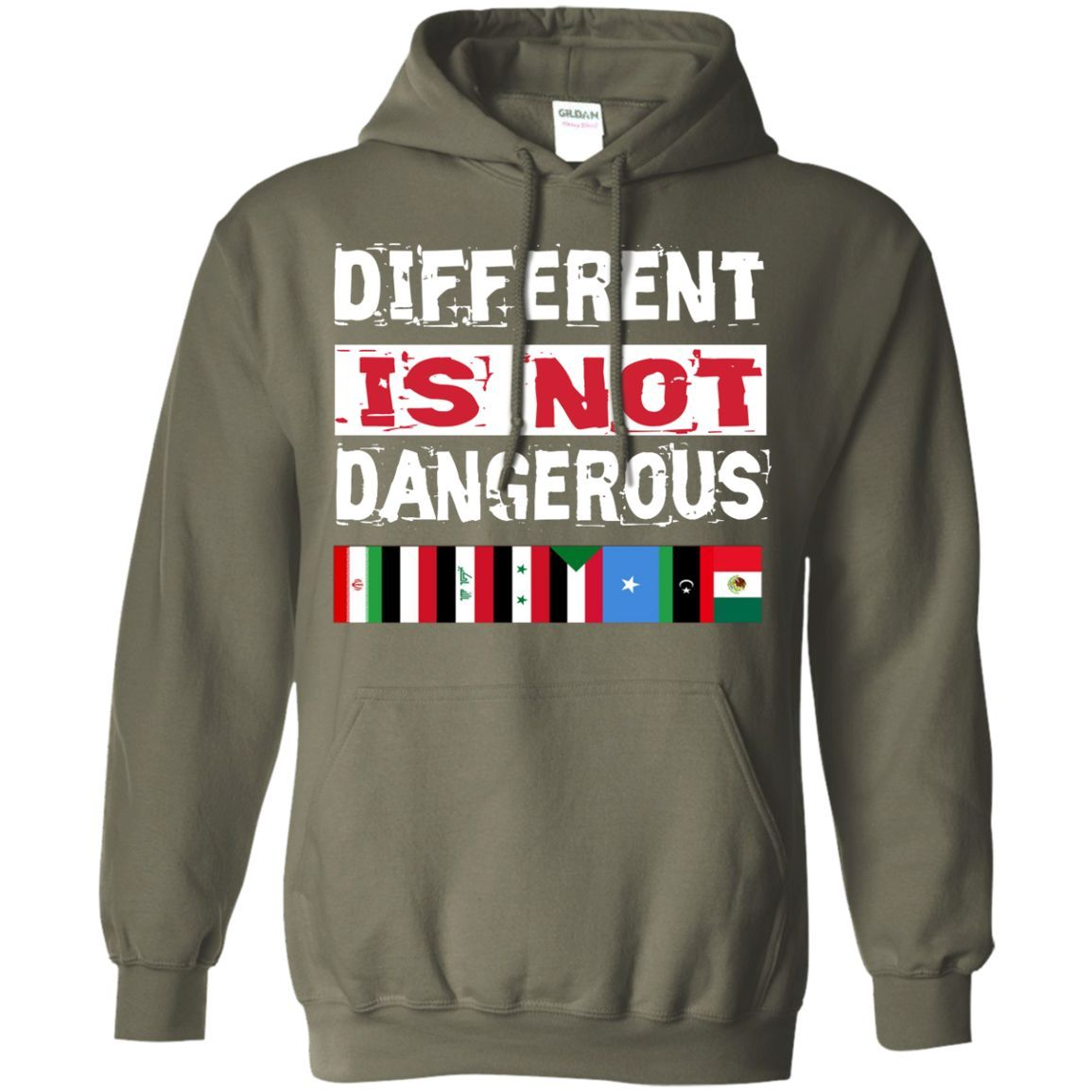 Different is not Dangerous Iran Iraq Sudan Mexico Flag Tshirt Pullover Hoodie 8 oz