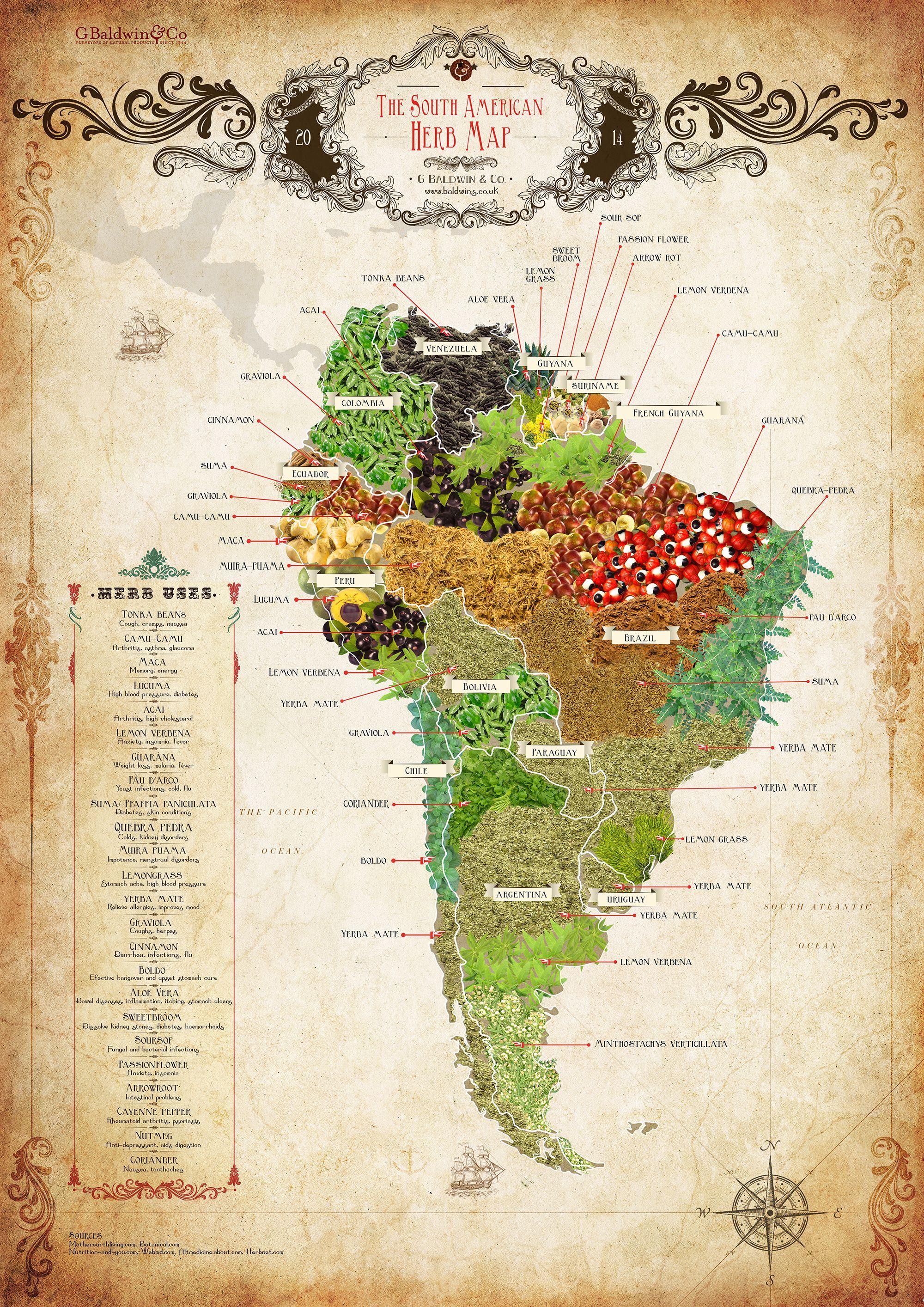 Baldwins South American Herb Map Download Share Botanica - World map latin america us
