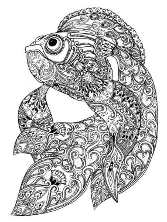 Paisley Doodle Fish Marine Pattern Printable Coloring Book Sheet For Adults PDF JPG Instant Download