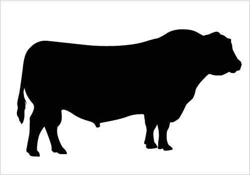Bull Silhouette Vector Clipart Quality Download Silhouette ...