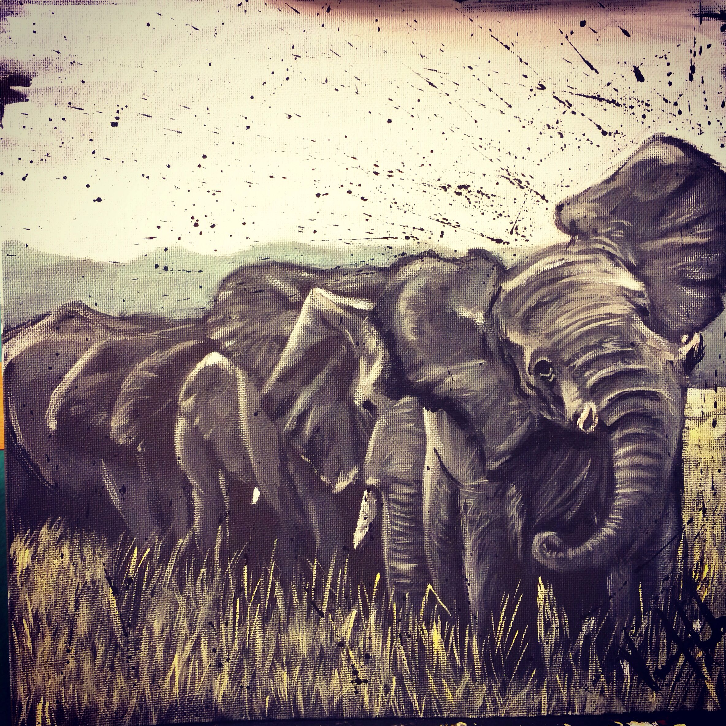 Did this african elephant herd painting. This photo was also on my Pinterest wish list board of things I want to paint!