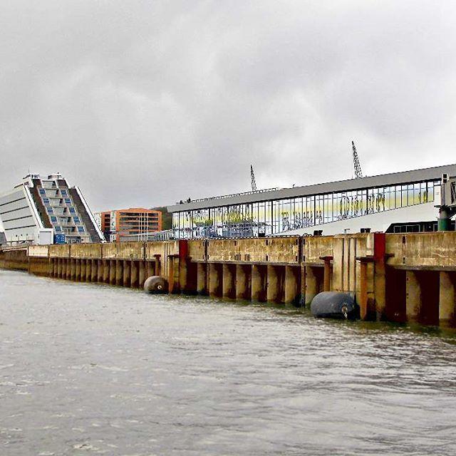 Port of Hamburg!... . . #port #hafen #hamburg #docks #hamburgmeineperle #hamburgerhafen #hamburgcity #elbe #elbstrand #architecture #tour #schifffahrt #portofhamburg #travel #photography #photooftheday #clouds #cloudyday