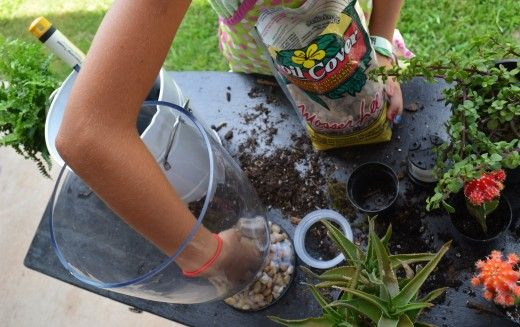 How to Make a Terrarium with your kids.