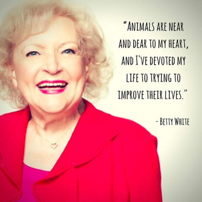 Betty White Quotes Betty White 3 #myveganjournal  Vegi Vegan  Pinterest  Betty