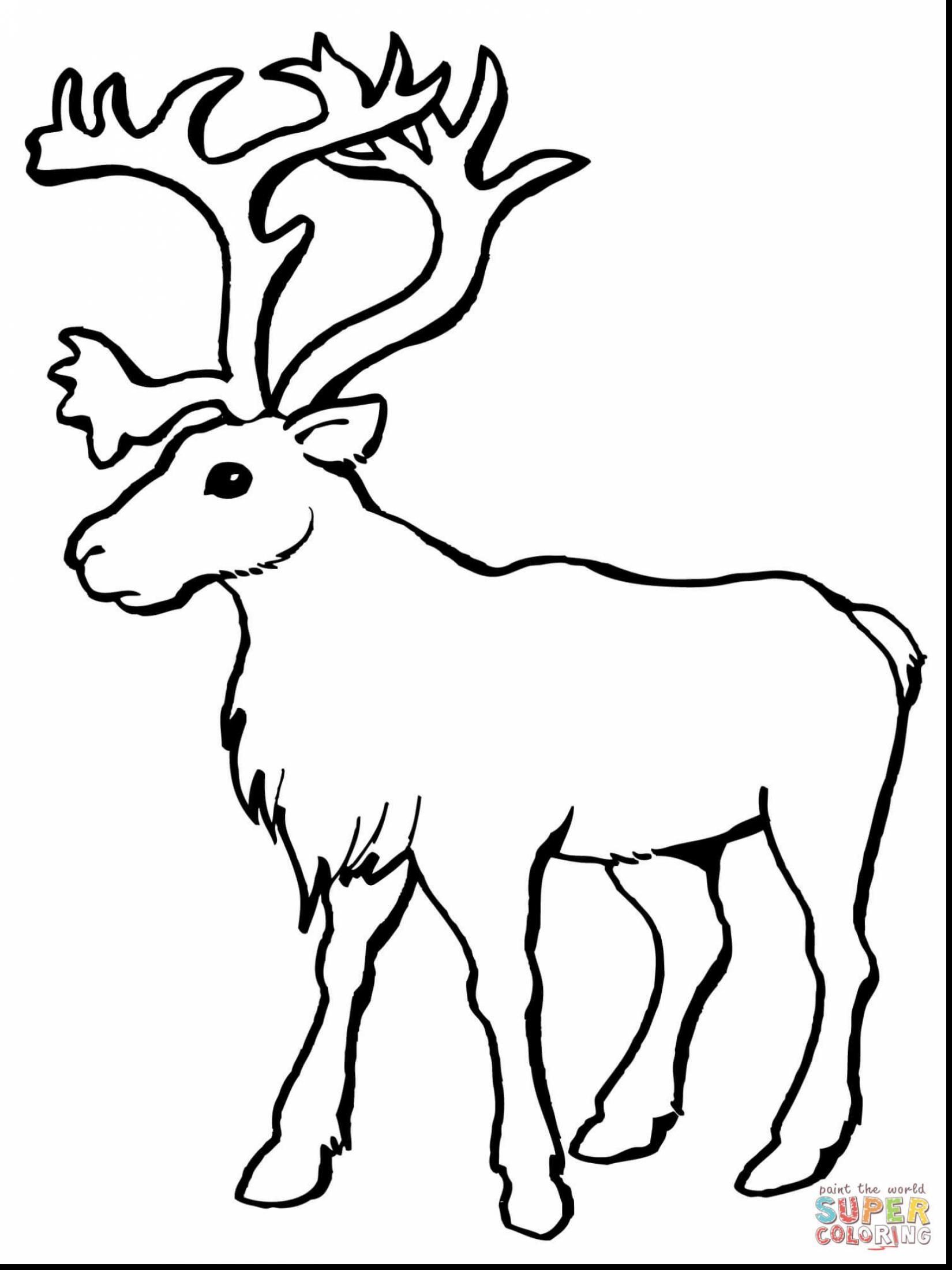 Impressive Reindeer Head Santa And Sleigh With Reindeer Coloring Page And Reindeer Face Coloring Pag Deer Coloring Pages Animal Coloring Pages Reindeer Drawing